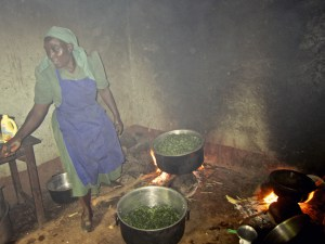 Before having an Energy-Efficient-Cooking Stove